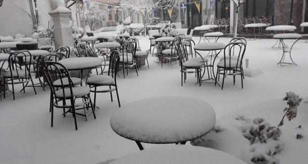 Snowy Anogy